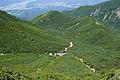 Forest in Yatsugatake 21.jpg