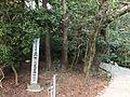 Forest of Sumiyoshi Shrine 2.jpg