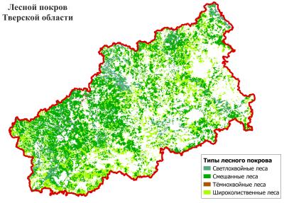 Доклад леса тверской области 3427