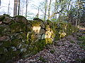 France Petit-Ringelstein east wall from inside.jpg