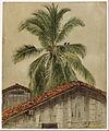 Frederic Edwin Church - Palm Trees and Housetops, Ecuador - Google Art Project.jpg