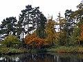 GOC Sandridge to Harpenden 098 Southdown Ponds (8245174012).jpg