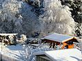 Gartenanlage Apelsberg.jpg