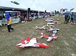 Gen-X Johor Fun Fly 2016.jpg