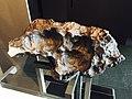 Gibeon meteorite, National Maritime Museum (35299554106).jpg