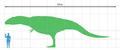 Giganotosaurus scale.png