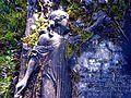 Glasgow. St Kentigern's Cemetery. Amelia Zanieri's grave.jpg