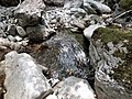 Gole di Alli 14 - Foto Teresa Petrone.jpg