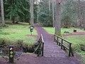 Gortin Glens Forest Park (16) - geograph.org.uk - 1712670.jpg