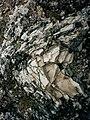 Gotland - KMB - 16001000530457.jpg