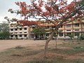 Govt Junior college ,Hayathnagar.jpg