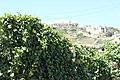 Gozo - panoramio (31).jpg