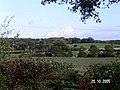 Grafton Wood - geograph.org.uk - 141523.jpg