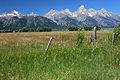 Grand Teton-Mormon Row 24.JPG