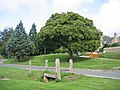 Great Rissington Village Green - geograph.org.uk - 233790.jpg