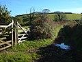 Green lane near Modbury - geograph.org.uk - 272794.jpg