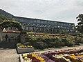 Greenhouse in Innoshima Flower Center.jpg