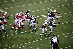 Greg McElroy handoff to Bilal Powell