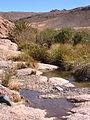 ����� ������� 90px-Guelta2.jpg