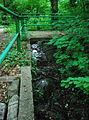 GuentherZ 2013-05-21 0526 Wien19 Gspoettgraben Steg zur Hoehle über dem Gspoettgraben.JPG