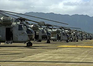 VMM-363 - CH-53D Sea Stallions from HMH-363 on the flightline at MCB Hawaii on January 12, 2006.