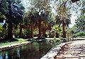 HYMC Tabgha Pool 1994.jpg