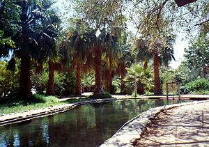 Jesus Trail - Tabgha pool