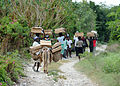 Haitian women return to their temporary homes after receiving shelter packages and water from the International Organization for Migration in Port-au-Prince, Haiti 100224-N-HX866-012.jpg