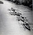 Hardwood logs transported down Suriname river.jpg