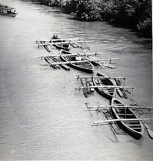 Suriname River - Image: Hardwood logs transported down Suriname river