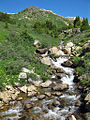 Headwaters of the Roaring Fork River.jpg