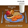 Healthy Balanced Meal.png
