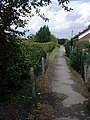 Hedgerow Lane - geograph.org.uk - 251967.jpg