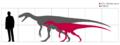 Herrerasaurus scale.png