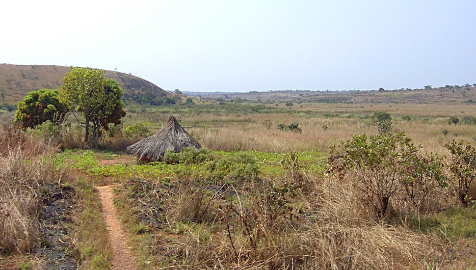 Hills near Ngaoundal