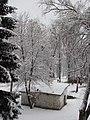 Honcharivs'ke, Chernihivs'ka oblast, Ukraine, 15558 - panoramio (2).jpg
