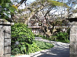 Honolulu-Manoa-Road-2859.JPG