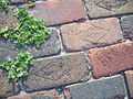 Horace Duncan House Lake City bricks01.jpg