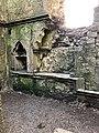 Hore Abbey, Caiseal, Éire - 45861544564.jpg