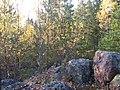 Hyvinkää, Finland - panoramio - pan-opticon (2).jpg