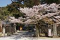 Ichijoji Kasai01ss3200.jpg