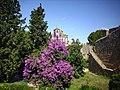 Igreja, muralhas e jardim.jpg