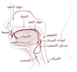 النزيف المعدي المعوي الأعراض 15