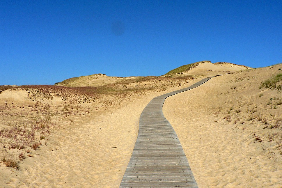 Image-Lithuania Juodkrante sand dunes