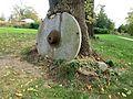 In Baum eingewachsener Mühlstein, Pulvermühlenpark Dresden Löbtau (1).jpg