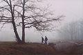 In Durlesti Forest (2001). (12151232266).jpg