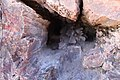 Inside the Petrified wood.jpg