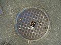 Inspection cover with arrows with directional instructions, S clockwise and O anti-clockwise - geograph.org.uk - 1491281.jpg