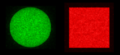 Intensity profile after use of diffractive homogenizer with coherent beam.png