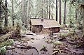Ipsut Creek Patrol Cabin with flood debris.JPG